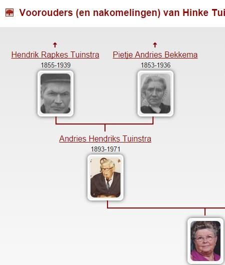 Genealogie Online - view 6